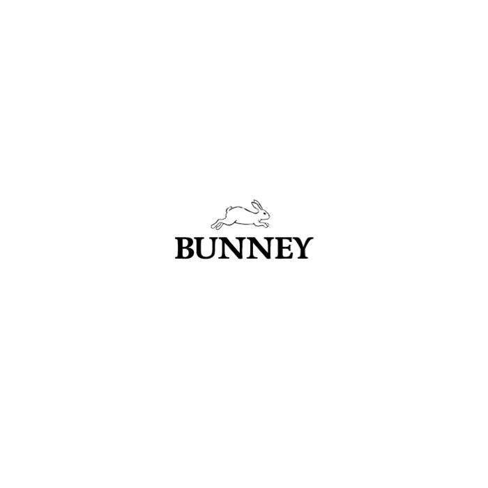 bunney%e3%83%ad%e3%82%b4%e3%83%87%e3%83%bc%e3%82%bf
