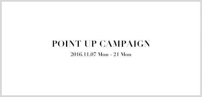 banner_point